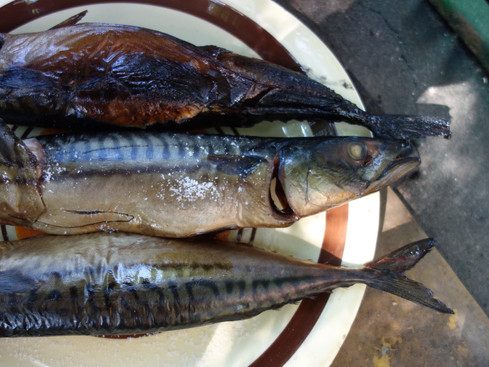 Recipe / Smoked mackerel: creating gold from smoke