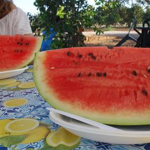 Riserva di Vendicari / Eating watermelon