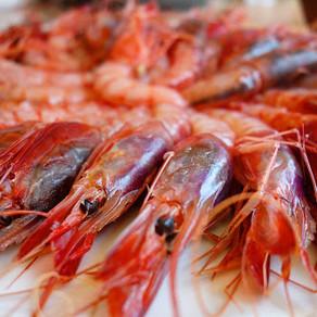 Recipe / Raw (or marinated) red prawns: my favorite food