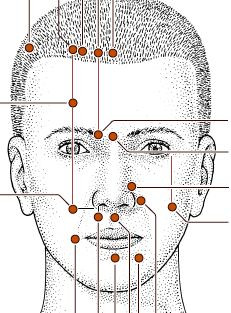 Natural Face Lifting by using acupressure points