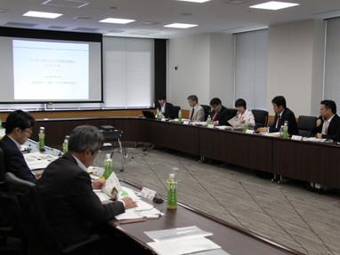 内閣府でのミーティングに参加しました
