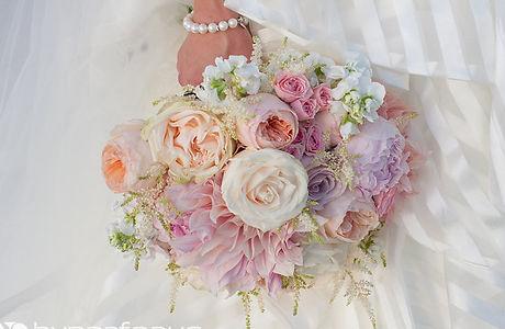 Peonies Fine Flowers 2.jpg