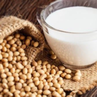 """La sentenza della CGE sul """"latte"""" di soia.  Aggiornamenti di diritto alimentare"""