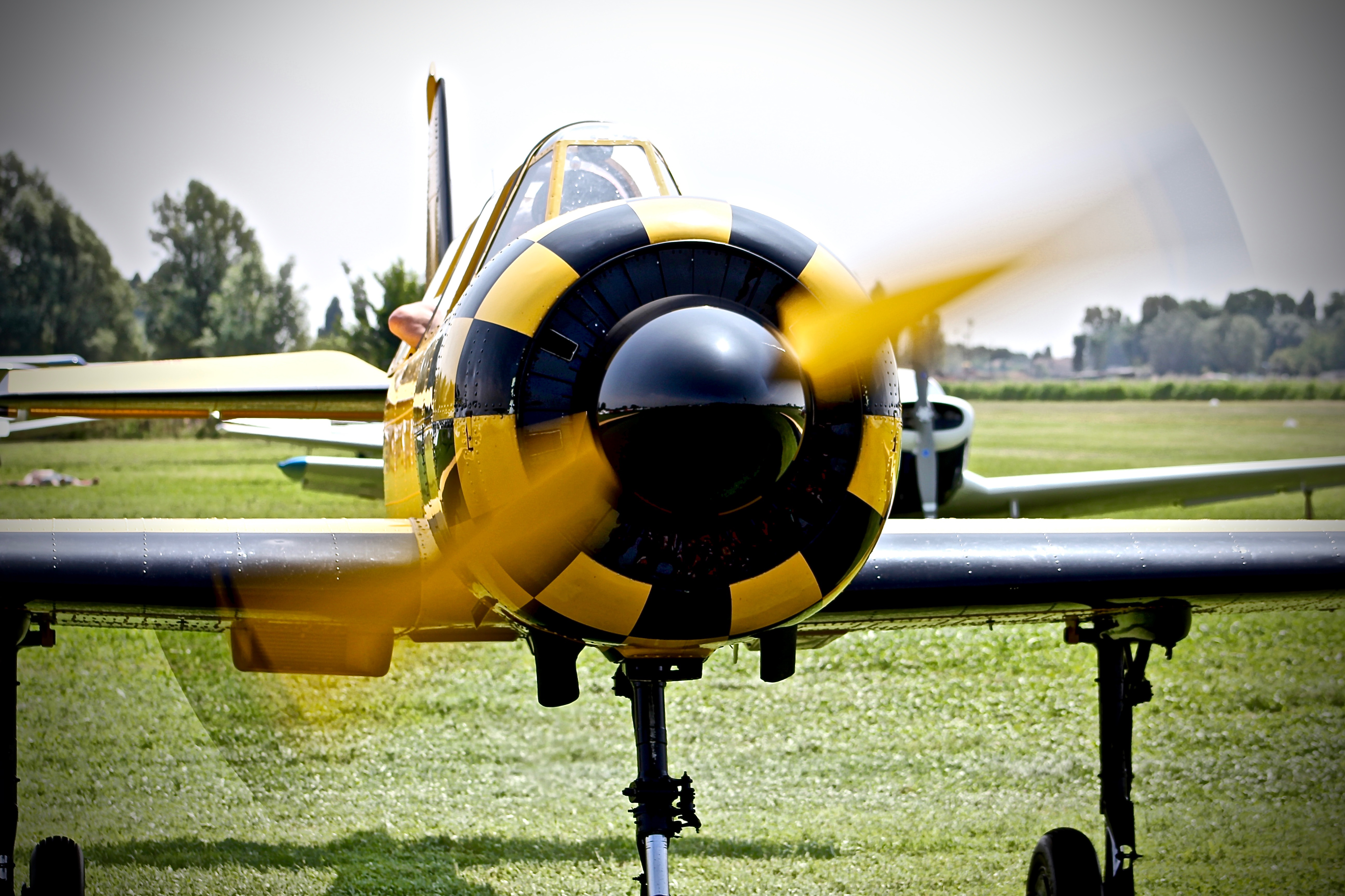 YAK 52, pilota Marco Marziali