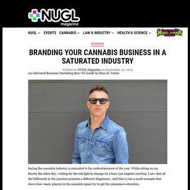 Article published on NUGL Magazine