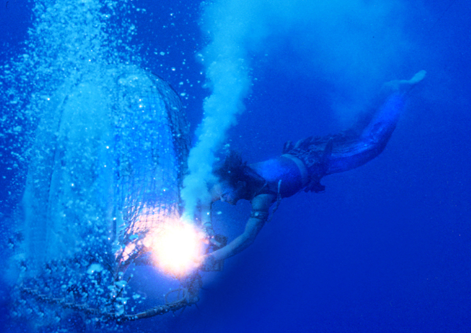 5-Water-World-Kevin-Costner-Dives-Under-Water-Photo-by-Ben-Glass
