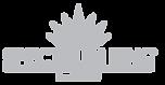 spectrum king logo.png