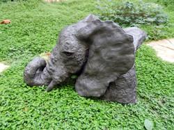BUSTE D'ELEPHANT