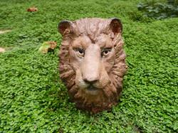 BUSTE DE LION