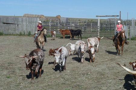 Chez les Cowboys du Saskatchewan 7.jpg