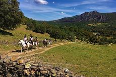 Newsletter Juillet-Août - Horse Ride Legend.jpg