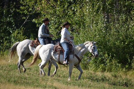 Montana J6.jpg