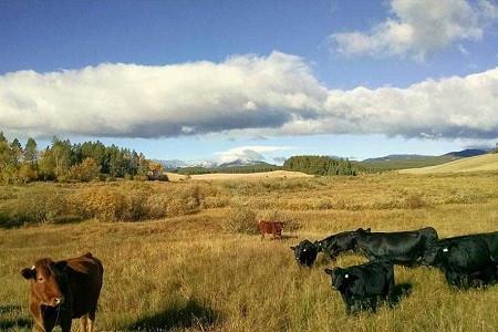 Wyoming Dimanche 2.jpg