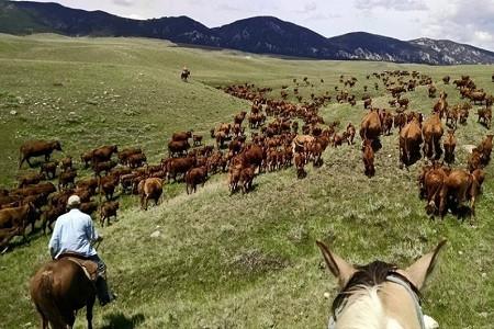Wyoming Jeudi.jpg