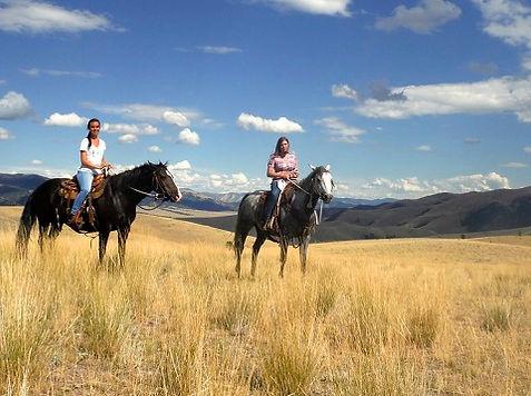 Montana onglet.jpg