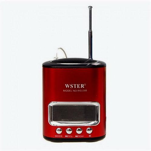 Радиоприемник  Wеster WS-259