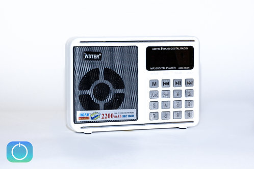 WSTER WS-2291