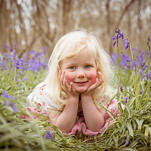 Millie in the Bluebells