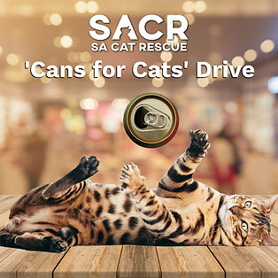 SACR Cans For Cats.jpg