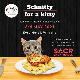 Schnitty for a Kitty - Eyre Hotel.jpg
