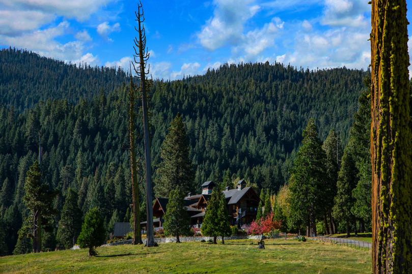 Cedars Lodge_2472.jpg