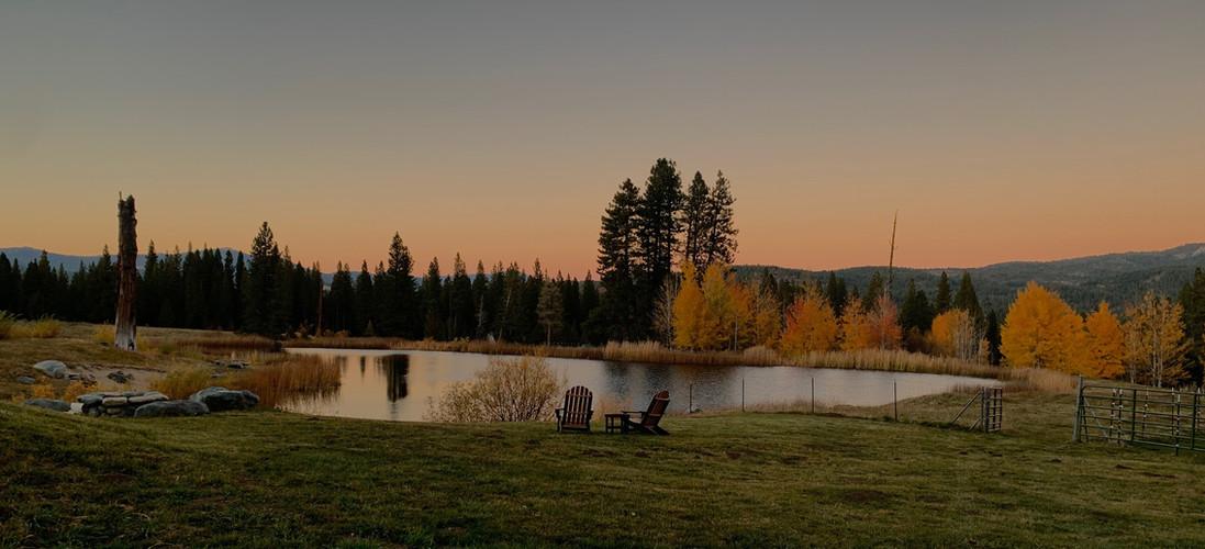 Cedars Sunset