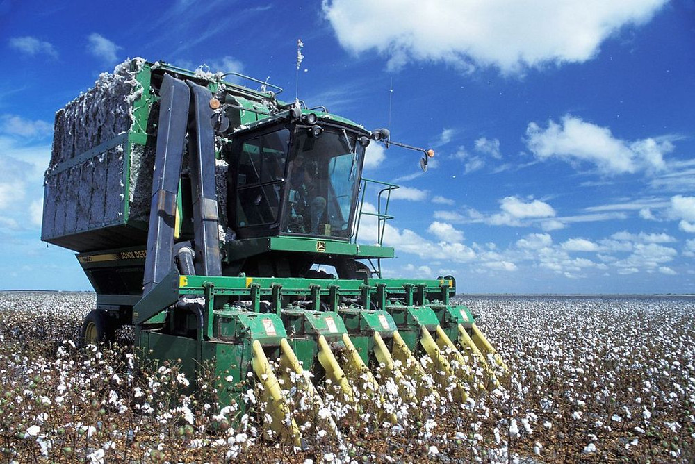 Tightening supply keeps grain sector supported