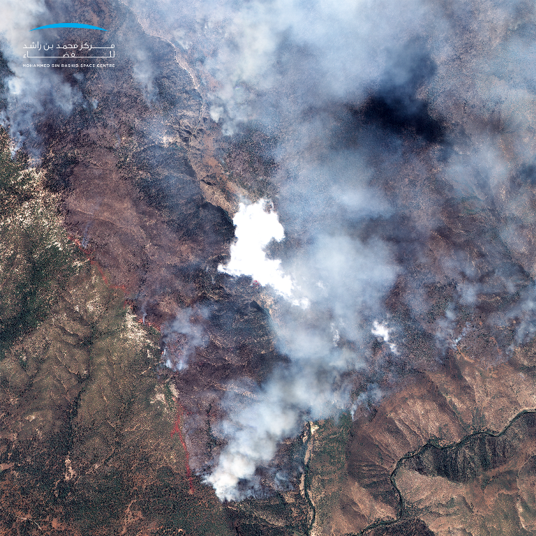 The Mohammed Bin Rashid Space Centre released an image that shows the wildfires in California