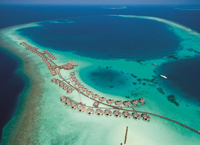 Constance Hotels & Resorts committed to the protection and restoration of Indian Ocean corals
