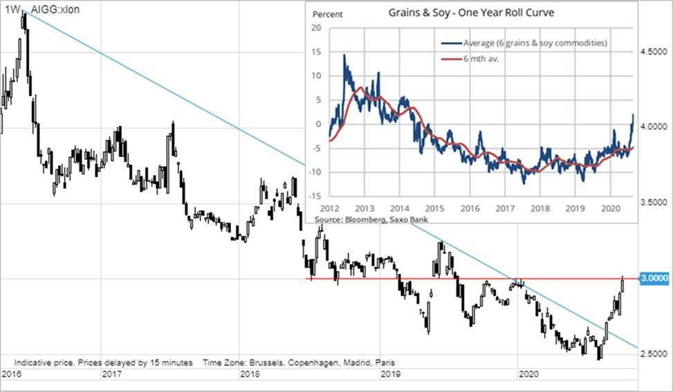 Grains & Soy - One Year Roll Curve