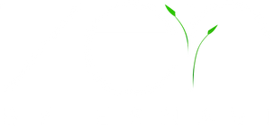 Zen-Logo_02_Full_Transparent.png
