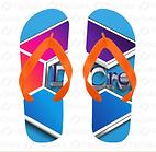 CDC Flip Flops.png
