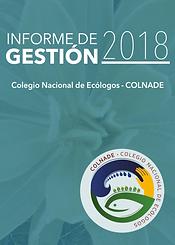 Portada informe 2018.png