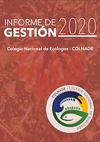 Pantallazo informe 2020.png