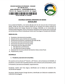 Pantallazo acta 2019-1.png