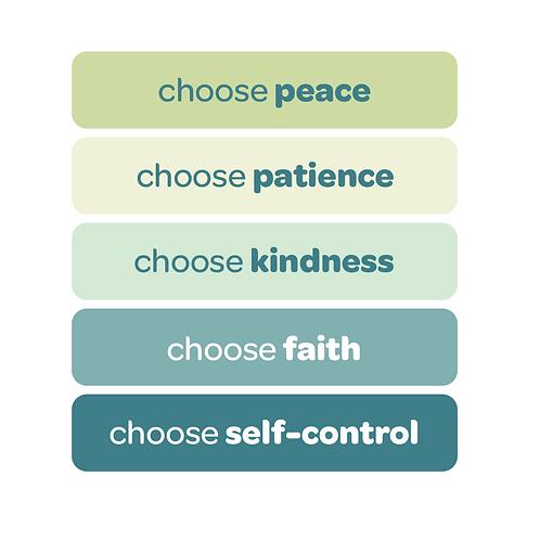 'choose peace' vinyl stickers