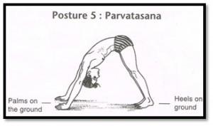 posture-5
