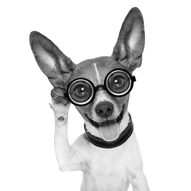 Dog-Glasses-grayscale-600.png