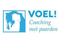 VOEL logo.jpg