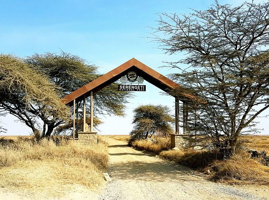 entrance-to-the-serengeti.jpg