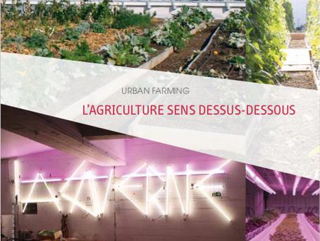 Urban farming : l'agriculture sens dessus-dessous