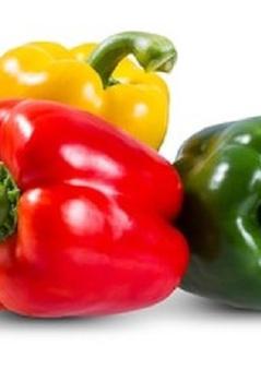 sweet pepper[1].jpg