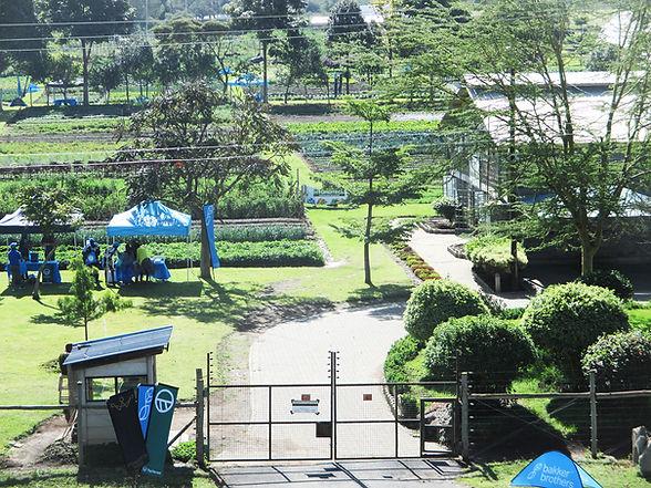 Office Farm.JPG