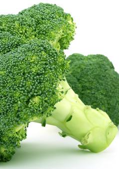 Broccoli Gem.jpg