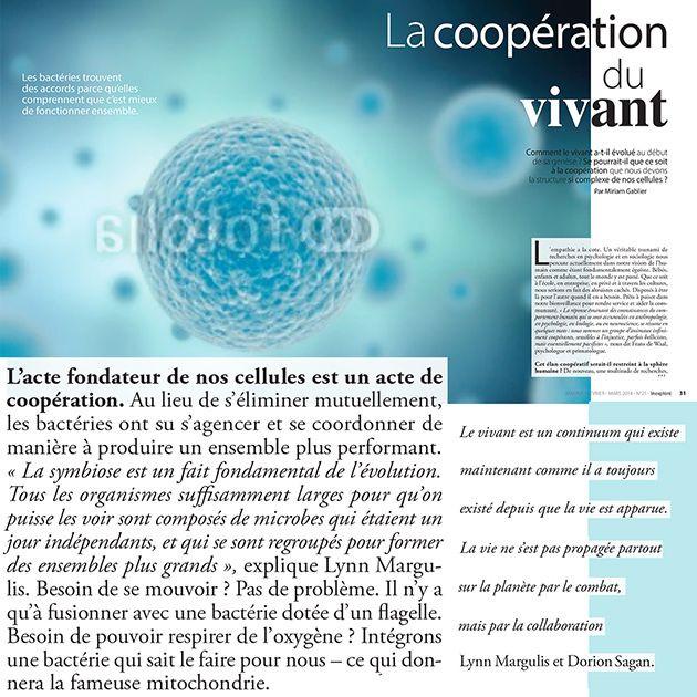 Coopération-legere-compressor.jpg