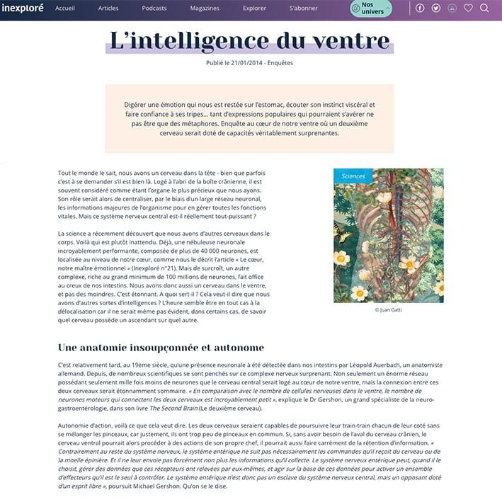 Webventre-min.jpg