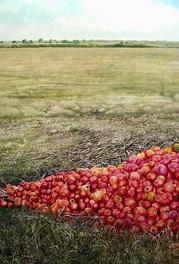 Tomates al Sol / 2015