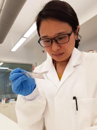 Dr Daisy Yang, UniSA FII