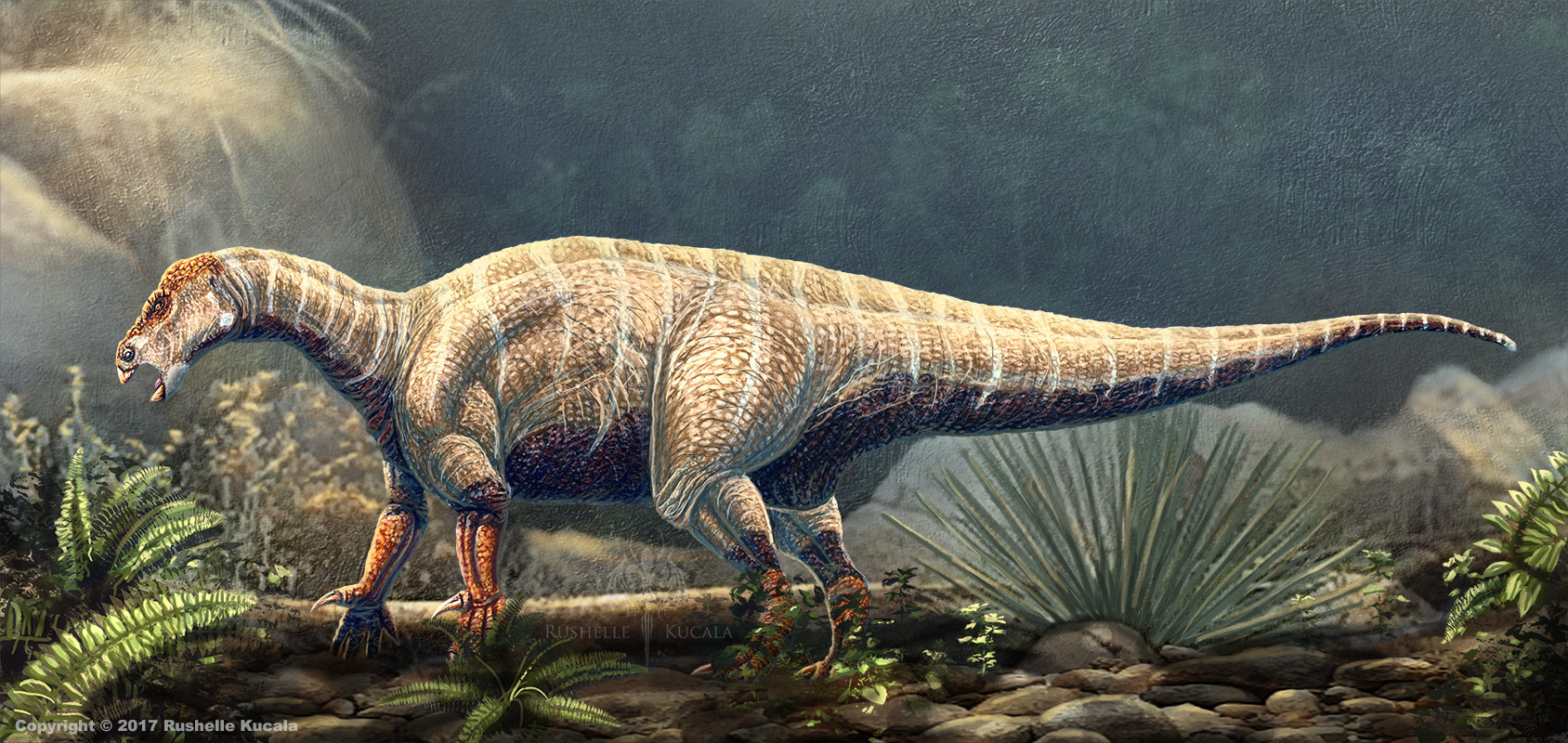 rushelle-kucala-iguanodonbernissartensis