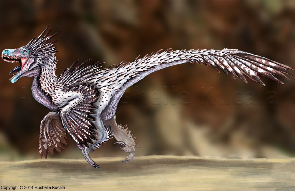 velociraptor_reconstructed_by_thedragono